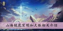 山海镜花宵明和天狐相关介绍