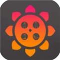 幸福宝app下载向日葵视频