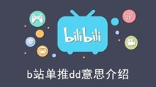 《b站》单推dd意思介绍