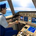 飞行模拟器2021多人